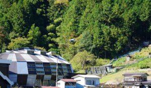 小菅村を飛行する物流ドローン